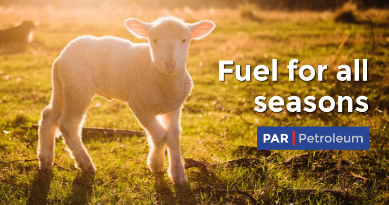 PAR Petroleum Fuel for all Seasons